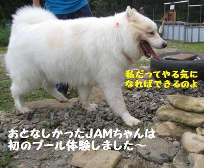 f0212597_1673894.jpg