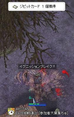 d0044652_2005055.jpg