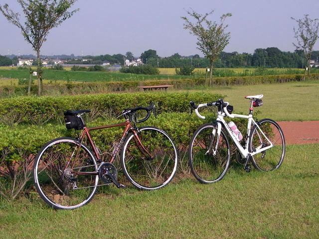 自転車の 自転車 ギヤ 変わらない : eeedonさんのいつもの散歩コース ...