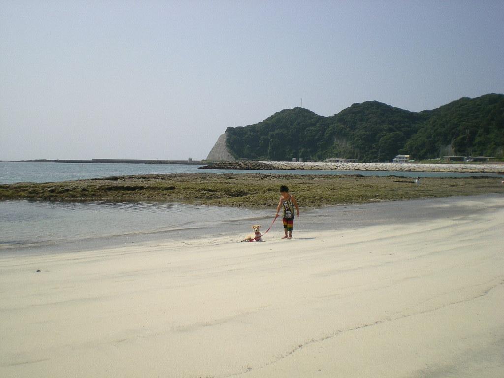 2010年8月24日(火)海と子供と子犬!_f0060461_9173771.jpg