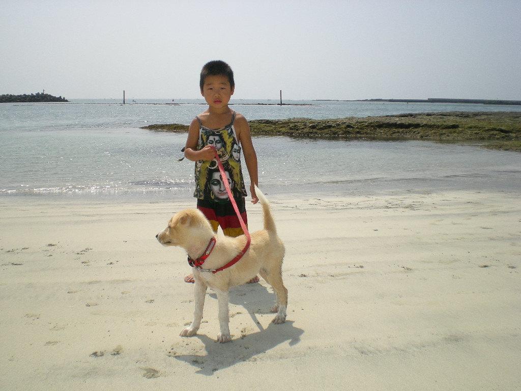 2010年8月24日(火)海と子供と子犬!_f0060461_9183722.jpg