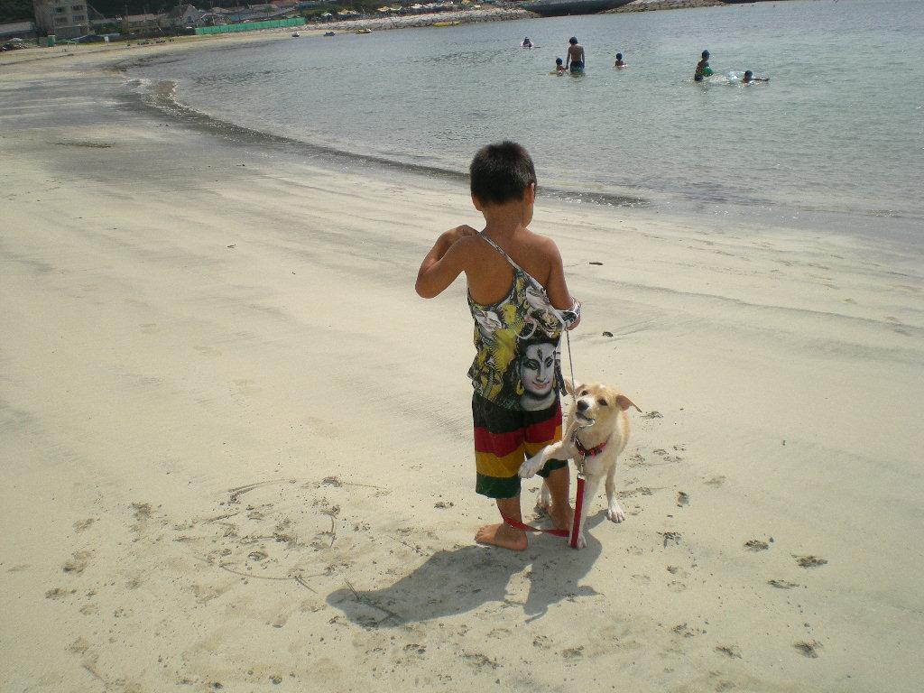 2010年8月24日(火)海と子供と子犬!_f0060461_9195736.jpg