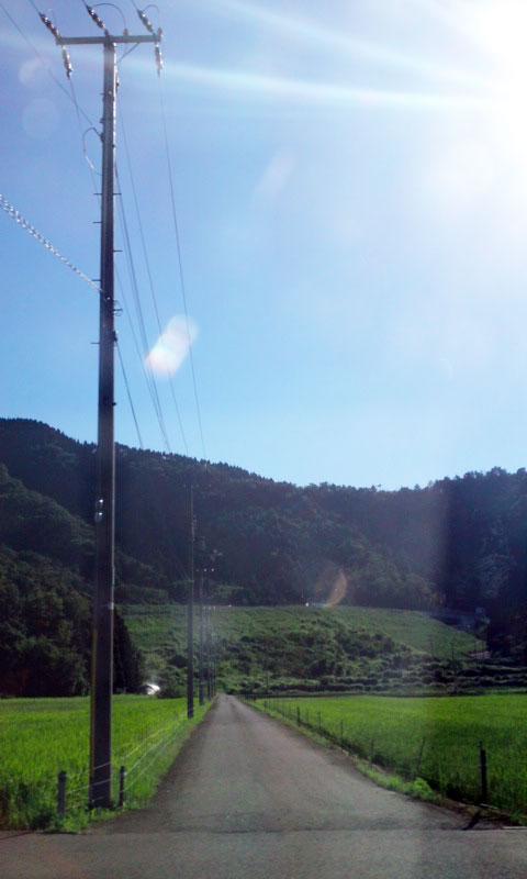 【奈良店アシスタント清水】大自然♪_c0080367_1174561.jpg