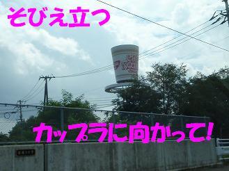 b0052375_1010654.jpg