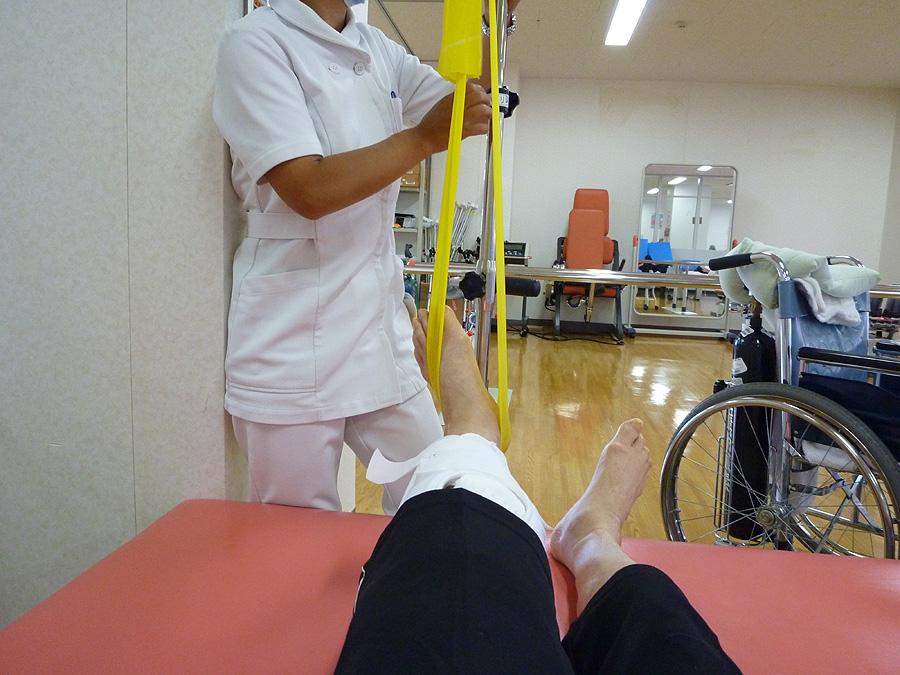 手術を行ってから七日目_d0151813_15535041.jpg