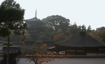 中将姫と當麻寺 (三)_a0045381_2344168.jpg