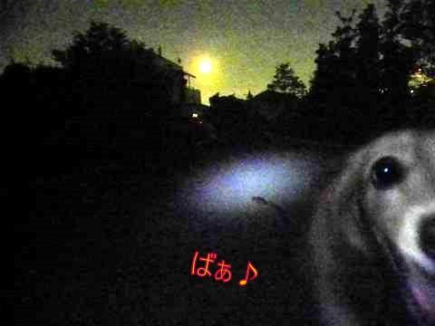 f0224506_20121028.jpg