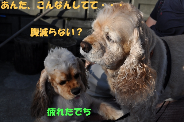 b0067012_26405.jpg