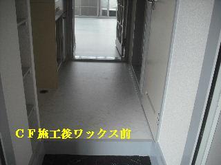 f0031037_21353660.jpg