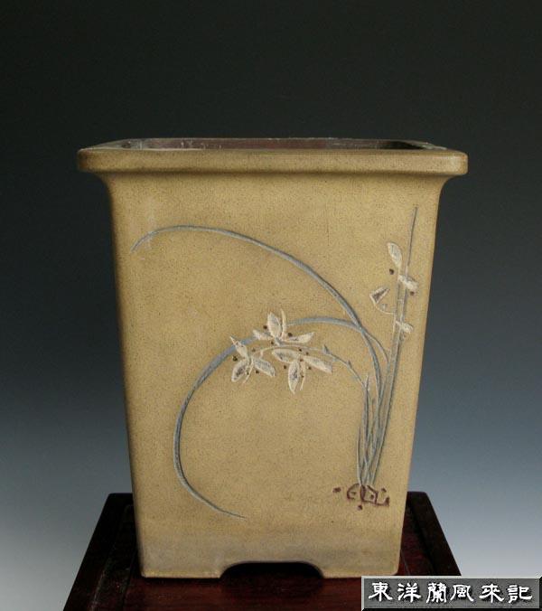 東洋蘭鉢「釘彫り鉢」                  No.358_b0034163_2329776.jpg