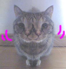 f0140271_0575012.jpg