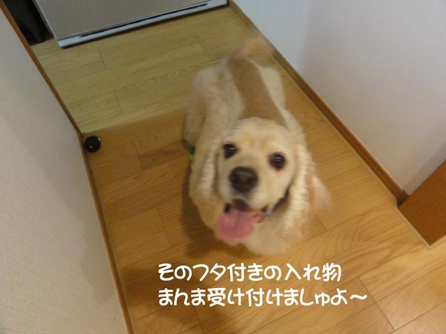 f0218182_22401932.jpg