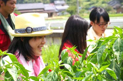 但東町での収穫体験_f0127806_17132484.jpg
