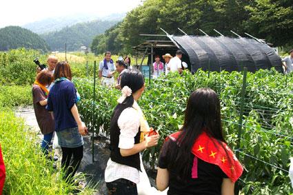 但東町での収穫体験_f0127806_1723520.jpg