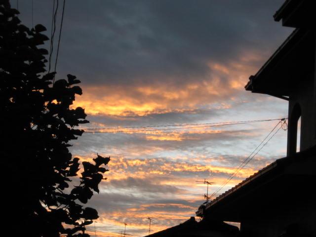 朝焼け_b0163121_21172961.jpg