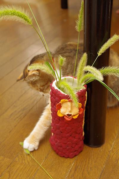 プーちゃん、猫じゃらしフェチ!_a0028451_123727.jpg