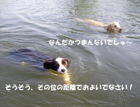 f0114893_1020596.jpg