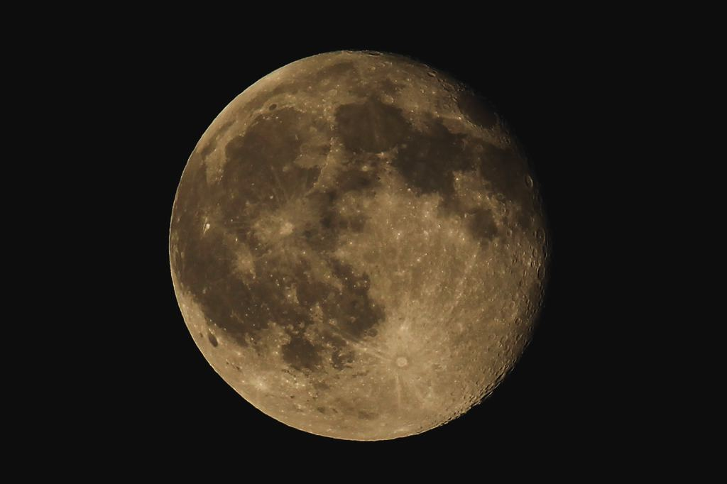 夏の想い出(1)ハスツバメ/十六夜/木星_b0024798_951231.jpg