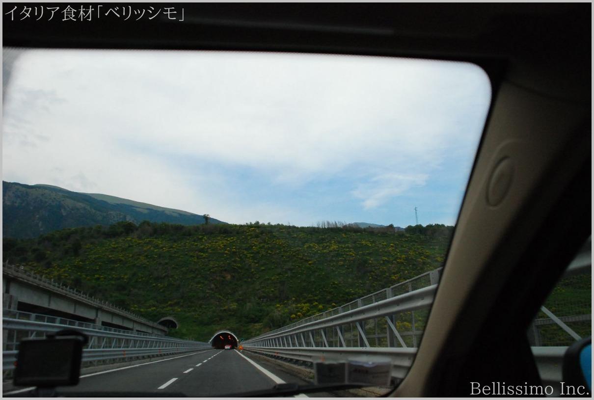 イタリア買い付け旅行 vol.12(8)「南イタリア高速道路」_c0003150_17123576.jpg