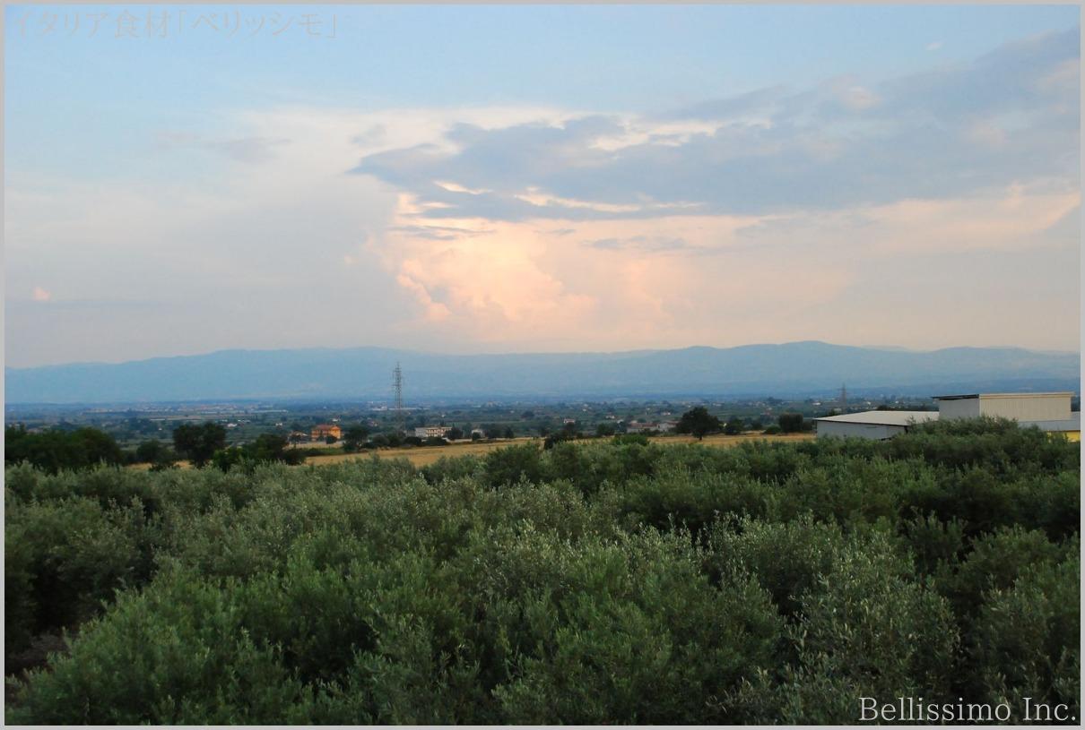 イタリア買い付け旅行 vol.12(8)「南イタリア高速道路」_c0003150_17144199.jpg
