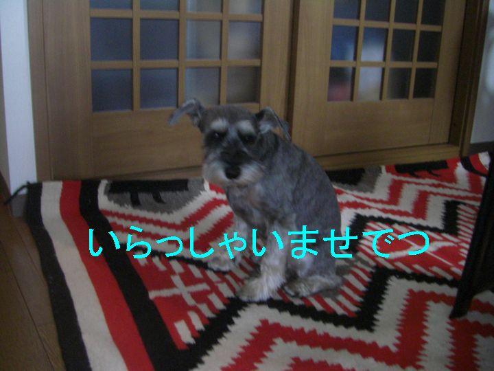 f0053952_17551298.jpg