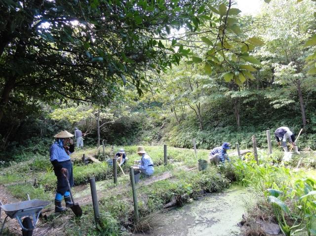 定例活動日:草刈り他_c0108460_16562511.jpg