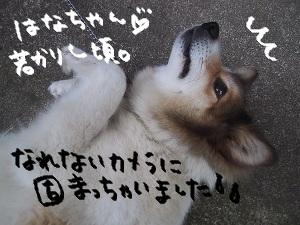 b0092580_036179.jpg