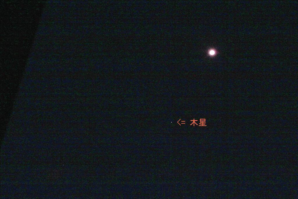 夏の想い出(2)蓮花カワセミ/月・木星の接近_b0024798_102419.jpg