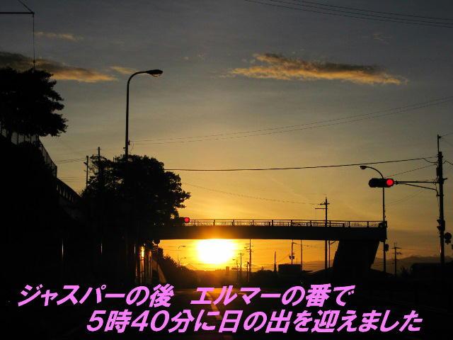 d0081210_865725.jpg