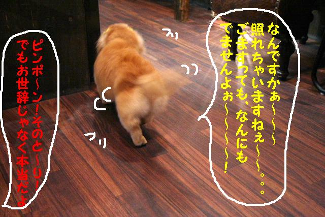 b0130018_105293.jpg