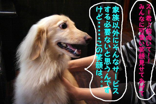 b0130018_9501651.jpg