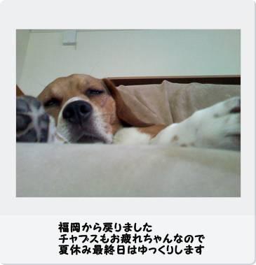 b0098660_1403147.jpg