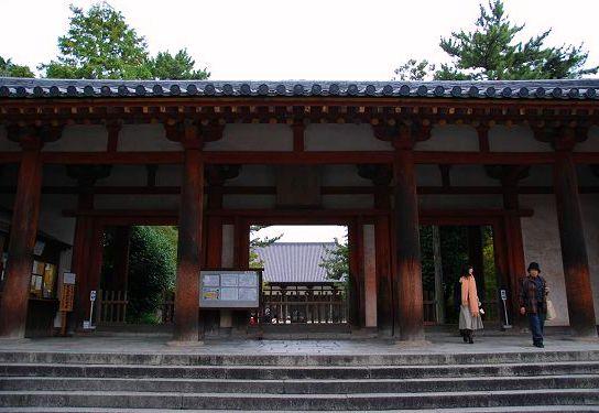 <2010年6月>伊勢路・奈良の旅(その3):「奈良・西ノ京の国宝寺」_c0119160_10532812.jpg