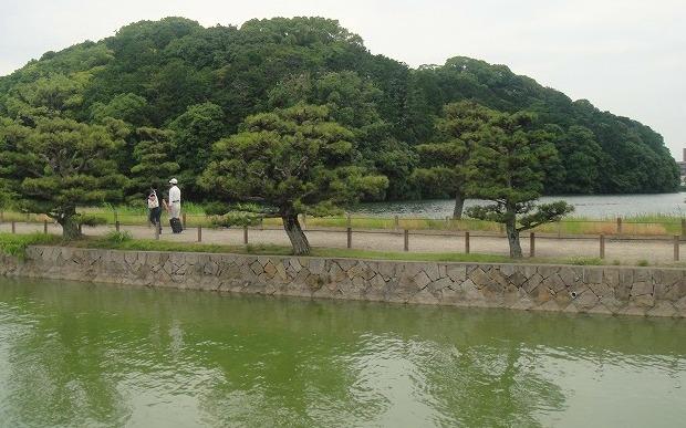 <2010年6月>伊勢路・奈良の旅(その3):「奈良・西ノ京の国宝寺」_c0119160_11482283.jpg