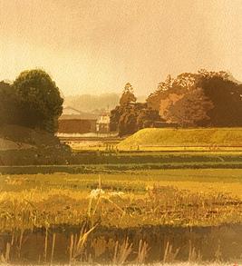 <2010年6月>伊勢路・奈良の旅(その3):「奈良・西ノ京の国宝寺」_c0119160_22383087.jpg