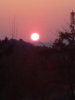 新柳の夕日。_d0182179_18103449.jpg