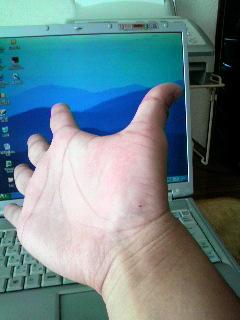 マウスにご用心_f0228680_1114041.jpg