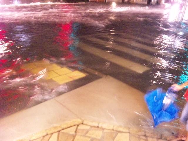 雨水氾濫でわや。。。_f0197703_204535.jpg