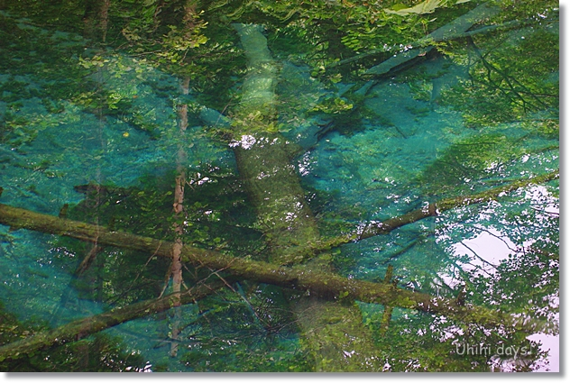 摩周湖の湧き水・・・神の子池 _f0179404_2182480.jpg