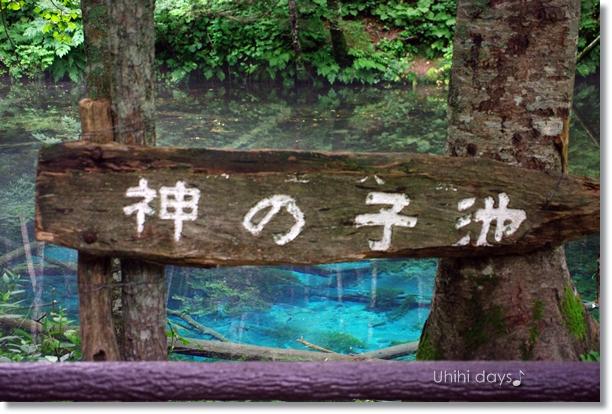 摩周湖の湧き水・・・神の子池 _f0179404_2185721.jpg
