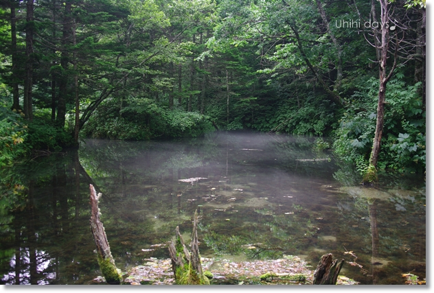 摩周湖の湧き水・・・神の子池 _f0179404_2192975.jpg