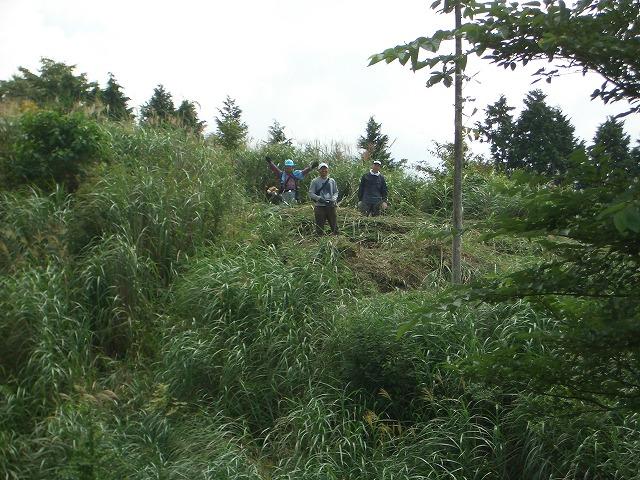 富士山国有林での下草刈りとトコロテン_f0141310_22265695.jpg