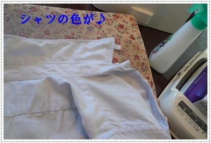 b0167519_10381956.jpg