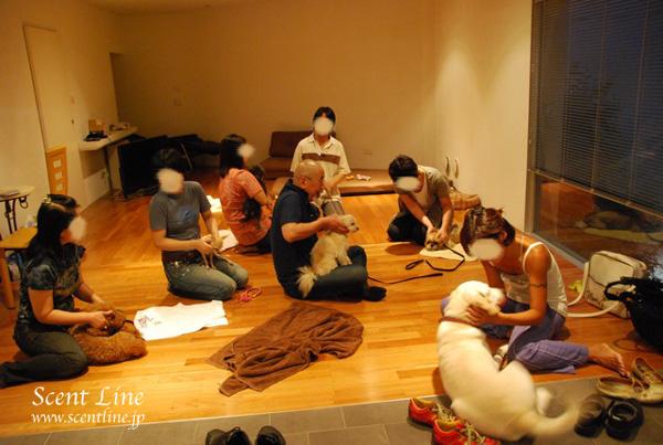 「愛犬の為の整体教室」第1回の模様_c0099133_23361838.jpg