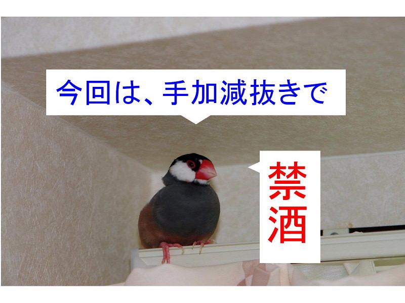 a0019545_1456213.jpg
