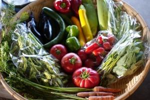 9月2週目の野菜セット不定期便のお知らせ_c0110869_22344434.jpg