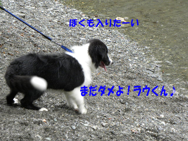 c0120585_22413287.jpg