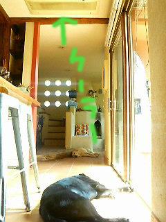 a0102815_11304135.jpg