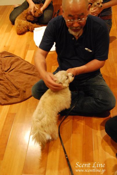 「愛犬の為の整体教室」第1回の模様_c0099133_112428.jpg