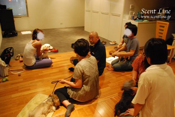 「愛犬の為の整体教室」第1回の模様_c0099133_116599.jpg